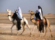 moving_company_libya